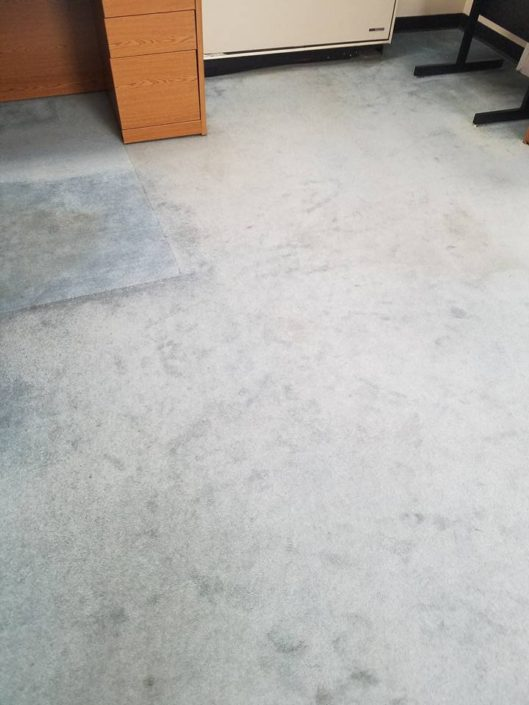 Carpet Cleaning Vincent