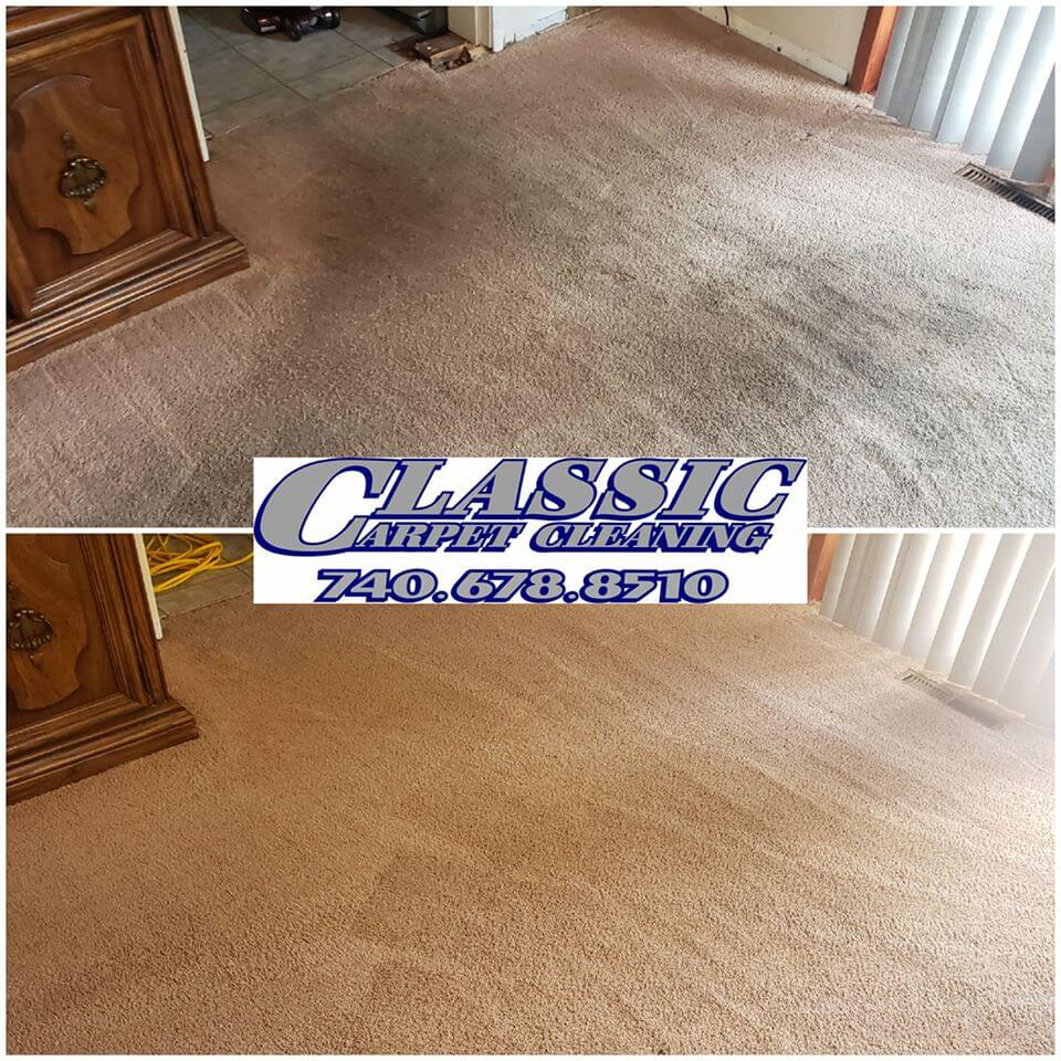 Carpet cleaning Vincent